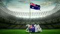 pitch, 2014, australia 11495748