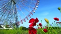 Ferris wheel for diamonds and flowers 11724490
