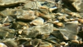 clear stream, river, river surface 11816706