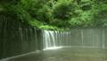 夏の軽井沢 白糸の滝 12013913