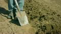 ดิน,เกษตรกรรม,ชาวนา 12099057