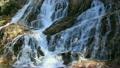 Fisher waterfall 12234506