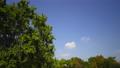 perming4k1409292藍天和雲的時間推移精細速度拍攝間隔拍攝視頻素材 12235393