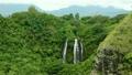 Opaekaa Falls, Kauai, Hawaii 12297604