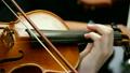 바이올린, 연주자, 바이올리니스트 13043398
