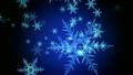Snowfall 13080428