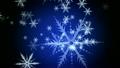 Snowfall 13080436