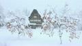 雪降りの白川郷 13145721
