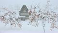 雪景色 13145724