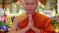 buddhist monk with orange robe pray in temple 13262279