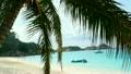 ビーチ 浜辺 海岸の動画 13472863