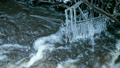 Fast water run in the spring stream, icicles are hanging on branches    14006766