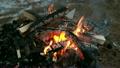 Burning wood, outdoor winter campfire macro video   14006769