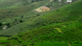 Zoom Out - Scenic Rice Farm Terraces - Northern Mountains of Sapa Vietnam 14070125
