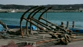 fishing port, surf, gull 14642179