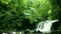 爽やか・日本の滝 14844291