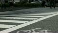都心の横断歩道 15445784