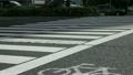 都心の横断歩道 15445785