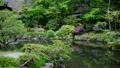 奈良 依水園の風景 15508533