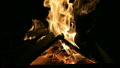 Burn fire with wood and legs 15767990