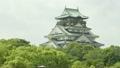 大阪城1 15807686