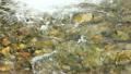 山間溪流 15807937