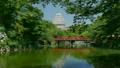 新的綠色新生兒姬路城堡 15876626