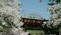 櫻花阪急列車 15927304