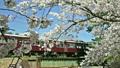 櫻花阪急列車 15927305