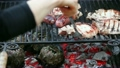 Grilling Meat 16004198