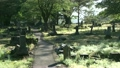 graveyard, daisen city, Tōhoku region 16263303
