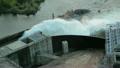 资源 释放 水电 16481230