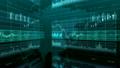 ビジネス 経済 チャートの動画 16594836