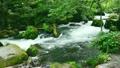 奥入瀬渓流阿修羅の流れ-6114846 16713841