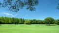 広い芝生の上を飛ぶ飛行機 パン 16773393