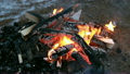 Outdoor winter campfire video, burning wood 16925801
