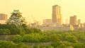 大阪城及周边街道(从傍晚到夜间间隔拍摄) 16945815