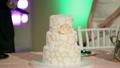 ウェディング 新婚夫婦 カットの動画 17120503