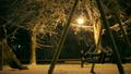 ฤดูหนาว,หน้าหนาว,สวนสาธารณะ 18915481