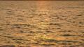 赤く染まる水面 19266206