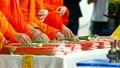 信仰 仏教 仏門の動画 19563450