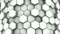 Abstract Background of White Honeycombs 19773083