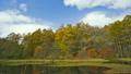 戸隠高原ミドリ池と黄葉したカラマツ 20428024