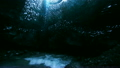 Icecave with underground river in Iceland 20508312