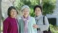 女性 シニア 高齢者の動画 20814628