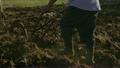 3-Man Farmer Cultivating Land Plowing Soil  21666573