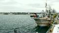 漁港 停泊 漁船の動画 21978393