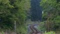 山間部を登る蒸気機関車、SLのドラフト音 21997885