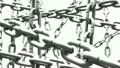 chain,chains,seamless 22116181