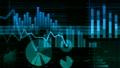ビジネス グラフ データ 経済 金融 株式 投資 22306797